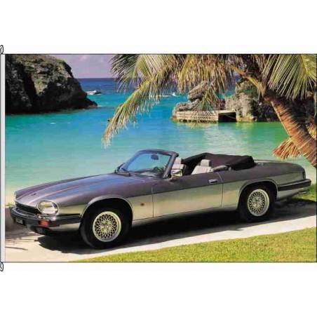 So-Jaguar