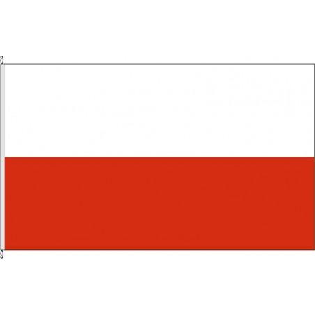 TH-Landesflagge Thüringen.