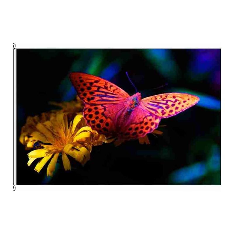 Fahne Flagge So-Schmetterling