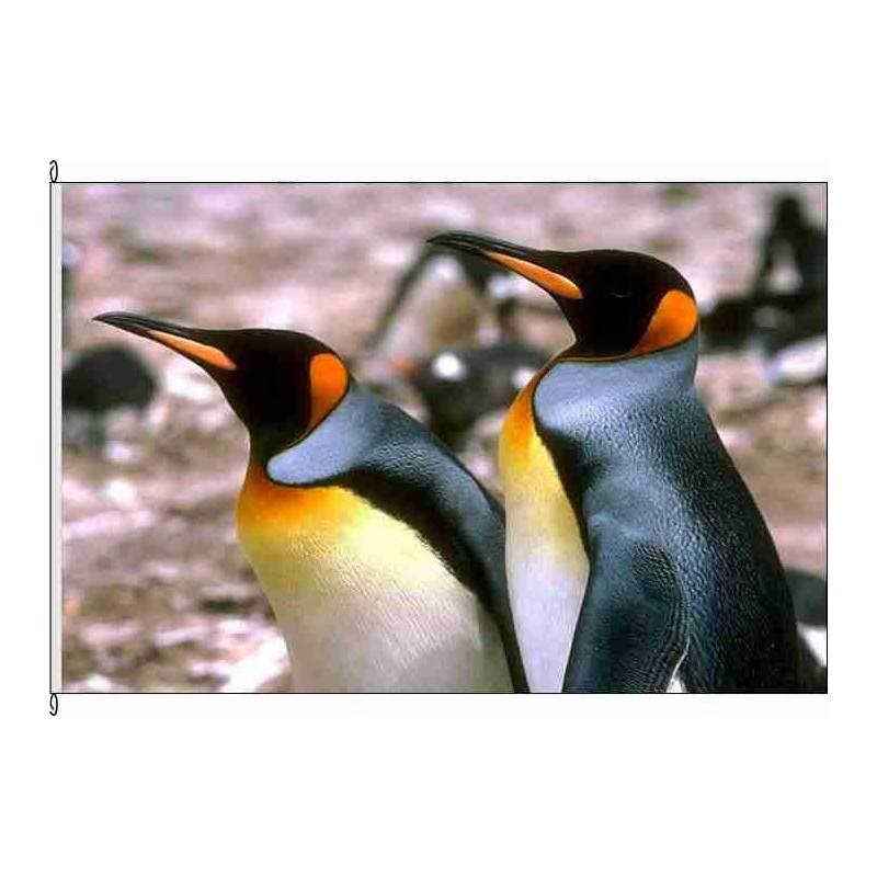 Fahne Flagge So-Pinguine