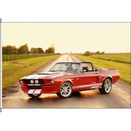So-Ford Mustang 2
