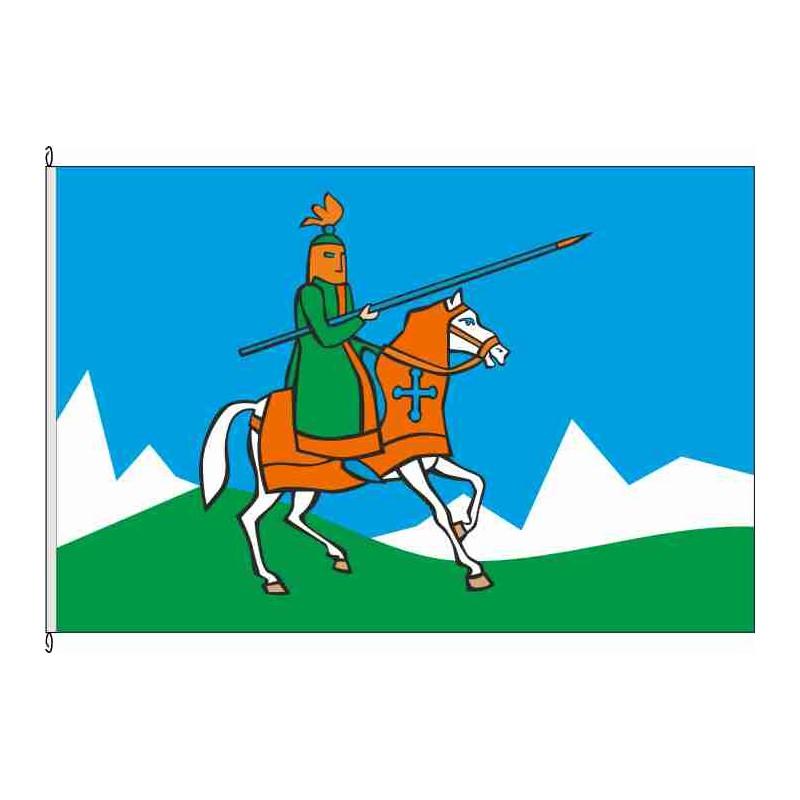 Fahne Flagge So-Lanzenreiter