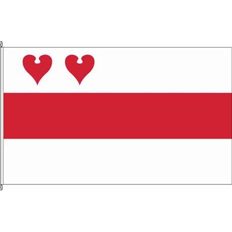 Fahne Flagge CLP-Friesoythe