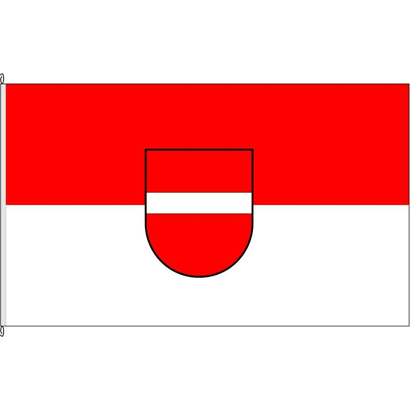 Fahne Flagge DN-Merzenhausen