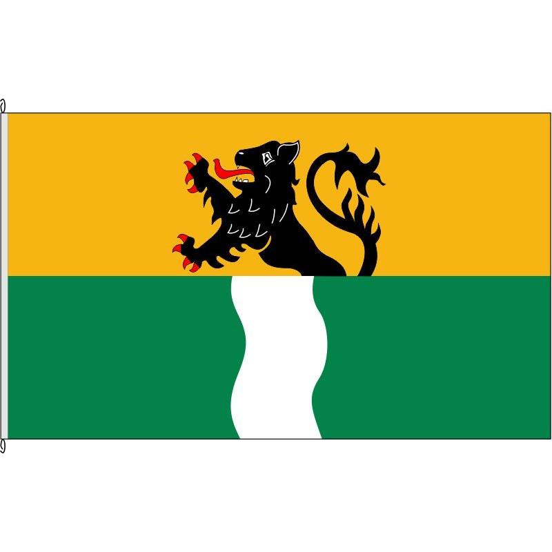 Fahne Flagge DN-Welldorf
