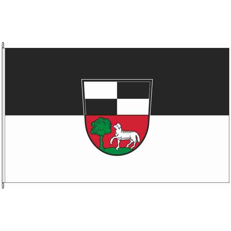 Fahne Flagge KT-Kleinlangheim