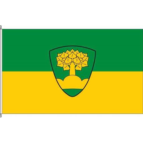 Fahne Flagge NU-Bellenberg