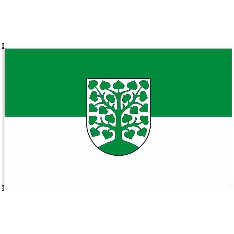 Fahne Flagge HOM-Homburg