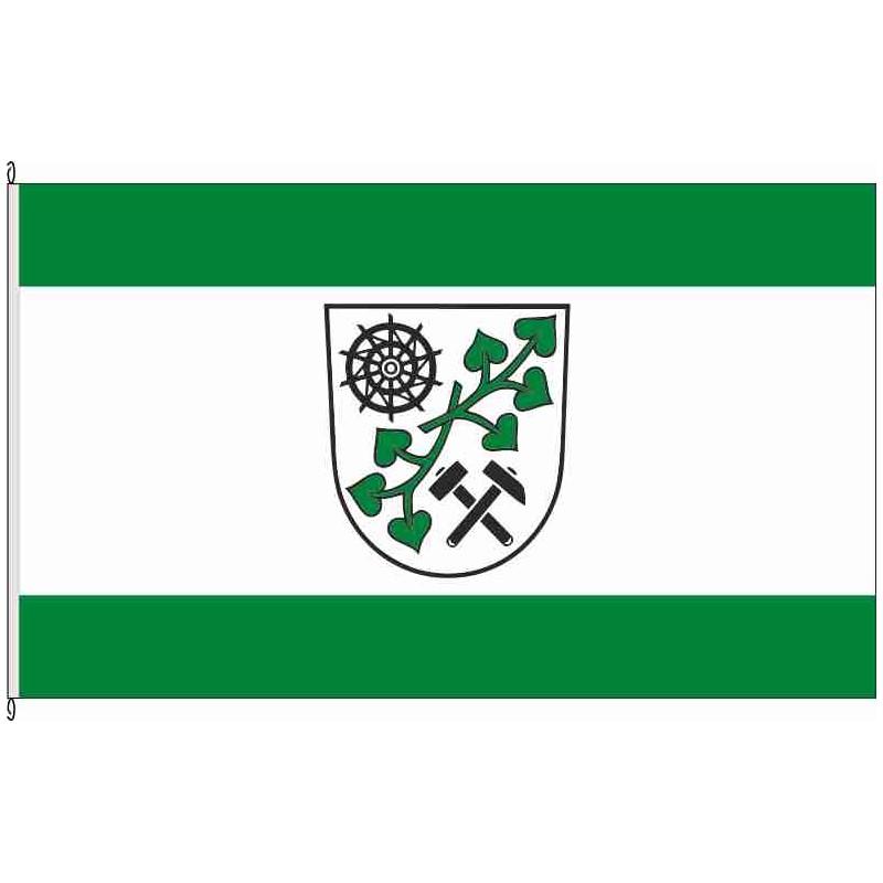 Fahne Flagge EE-Plessa