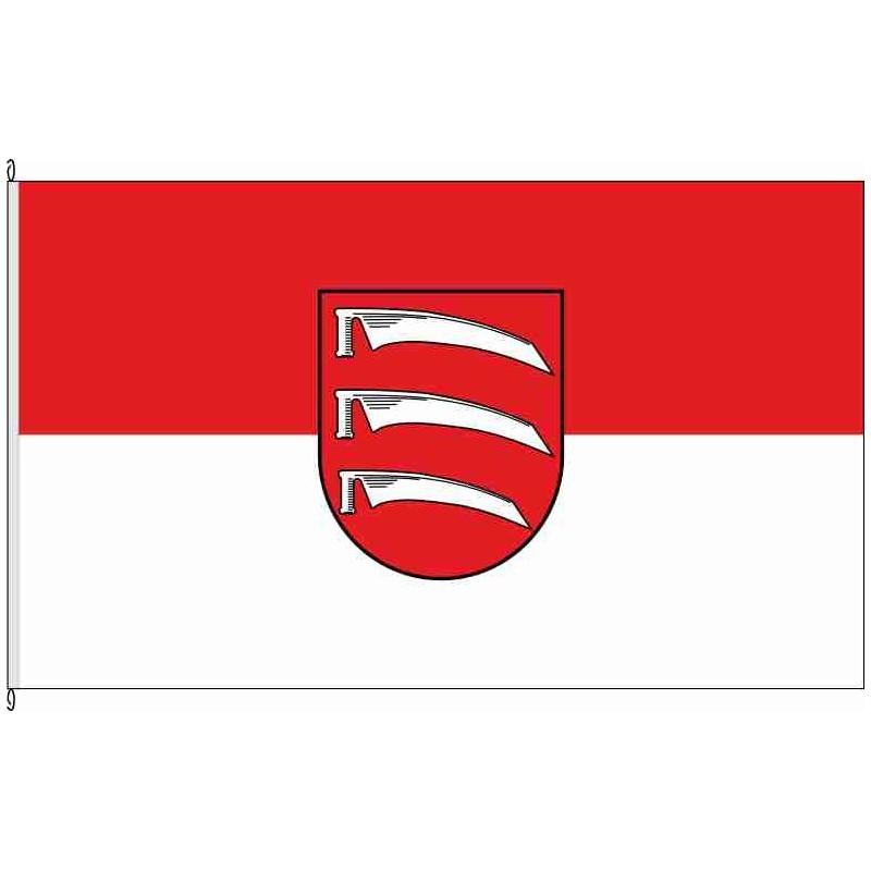 Fahne Flagge LOS-Friedland