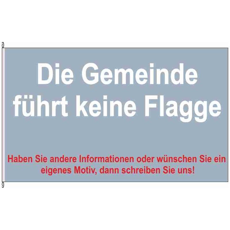 Fahne Flagge LWL-Dambeck
