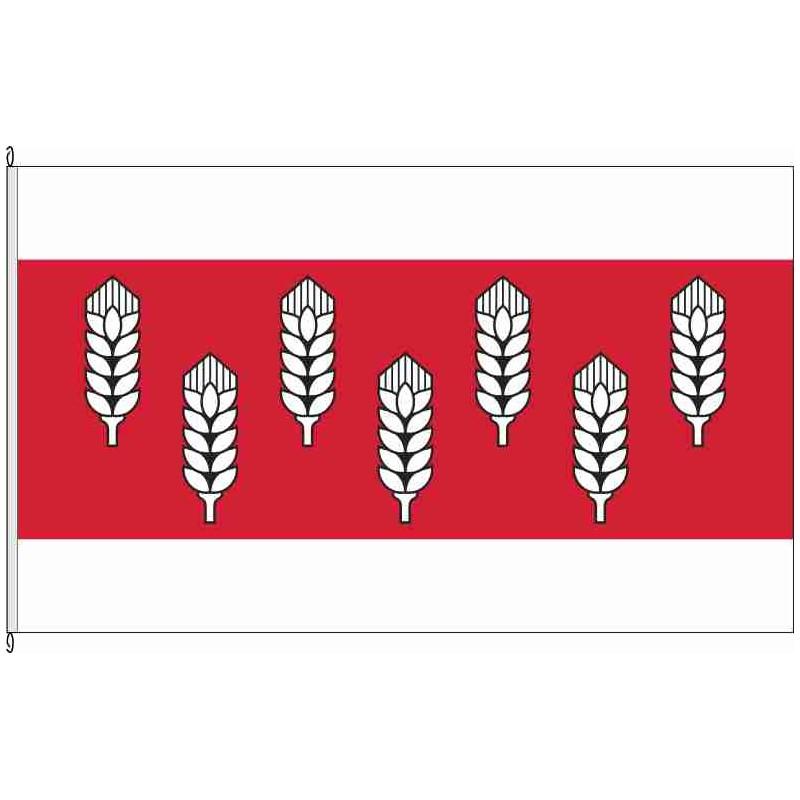 Fahne Flagge BK-VG Westliche Börde historisch