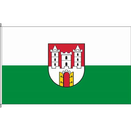 Fahne Flagge SK-Wettin