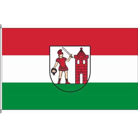 Fahne Flagge SK-Schraplau