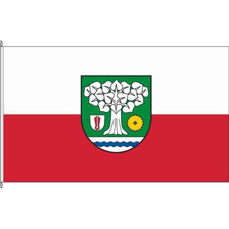 Fahne Flagge GTH-Molschleben