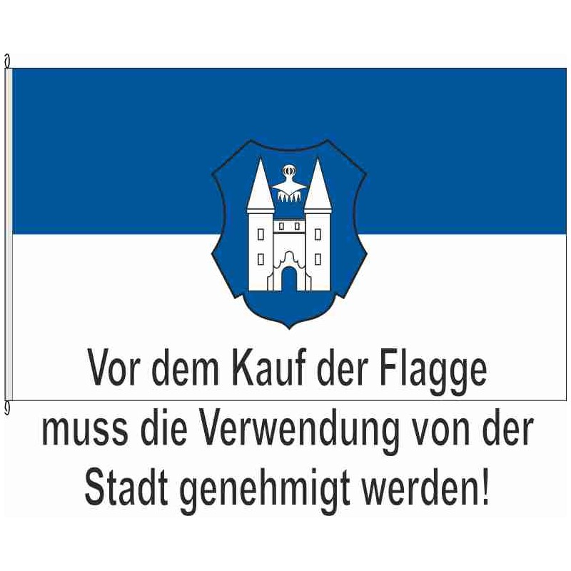 Fahne Flagge IK-Stadtilm