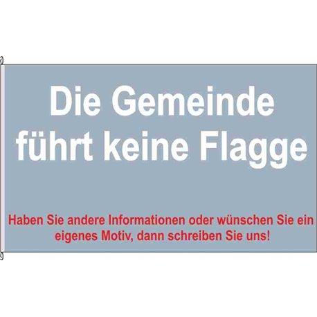 Fahne Flagge SHK-Trockenborn-Wolfersdorf