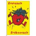Obst Erdbeere (nur hochformat)